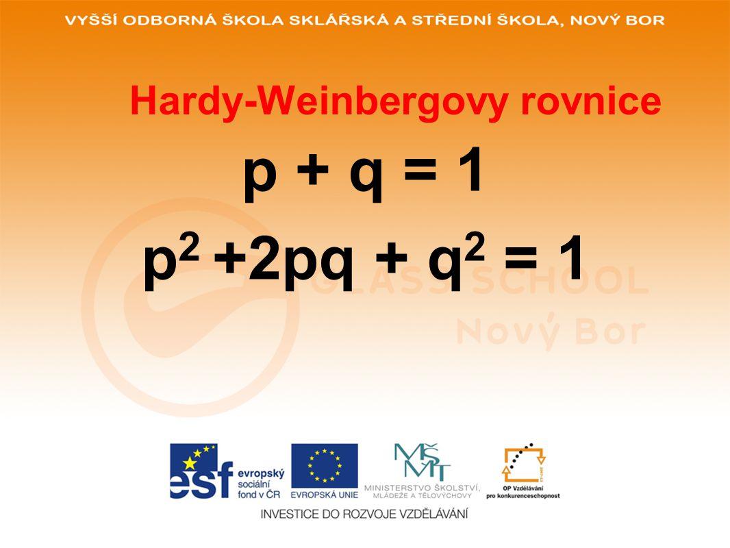 Hardyho-Weinbergův zákon platí pro panmiktické populace četnost dominantní alely určitého genu v genofondu populace četnost recesivní alely platí: p + q = 1 (100%) (100%) pravděpodobnost setkání dvou dominantních alel (vznik dominantního homozygota) pravděpodobnost setkání dvou recesivních alel pravděpodobnost vzniku heterozygota Pro celkové genotypové složení populace platí p x p = p 2 q x q = q 2 (p x q)+(q x p) = 2pq p 2 + 2pq + q 2 = 1 p q