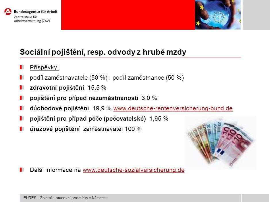 Vyučit se řemeslu Duální systém – výuka ve firmě, tak i v učilišti Nedostatek učňů (výuka probíhá v německém jazyce) Délka studia 2, 3 nebo 3,5 roku Měsíční plat dle oboru vyučení (250 - 978 EUR/měsíčně) Někteří zaměstnavatelé nabízejí bonusy (jazykový kurz, ubytování) www.arbeitsagentur.dewww.arbeitsagentur.de ( Jobbörse – Sie suchen Ausbildung).