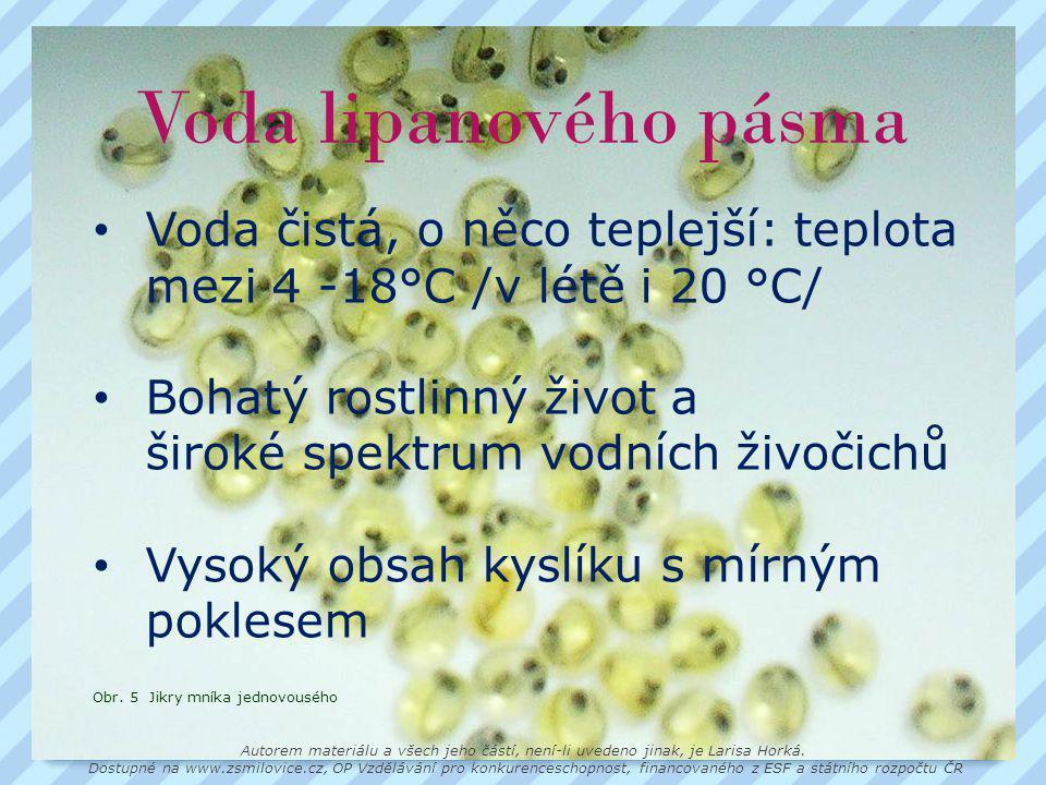 Voda lipanového pásma • Voda čistá, o něco teplejší: teplota mezi 4 -18°C /v létě i 20 °C/ • Bohatý rostlinný život a široké spektrum vodních živočichů • Vysoký obsah kyslíku s mírným poklesem Obr.