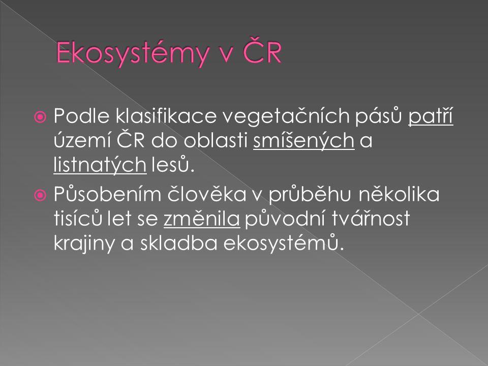  Téměř všechny ekosystémy v České republice byly našimi předky výrazně pozměněny.