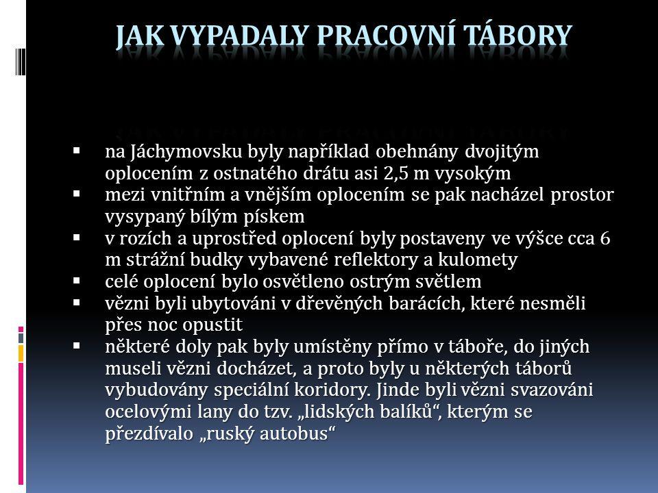  na Jáchymovsku byly například obehnány dvojitým oplocením z ostnatého drátu asi 2,5 m vysokým  mezi vnitřním a vnějším oplocením se pak nacházel pr