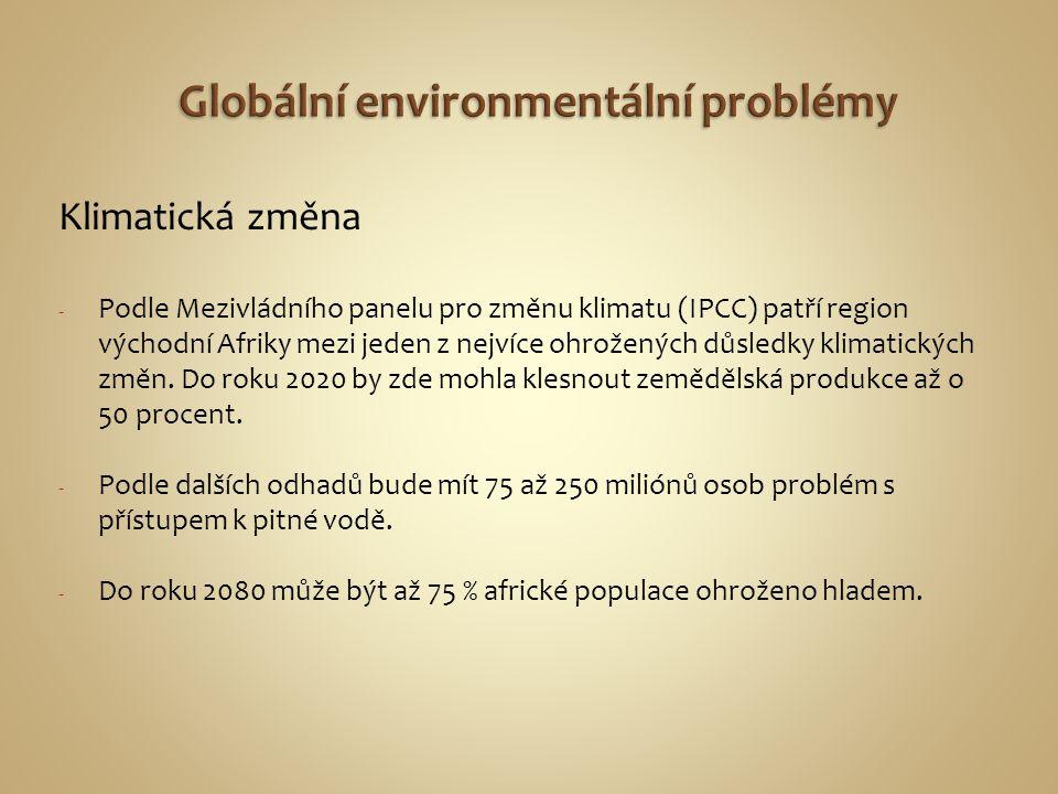 Klimatická změna - Podle Mezivládního panelu pro změnu klimatu (IPCC) patří region východní Afriky mezi jeden z nejvíce ohrožených důsledky klimatický