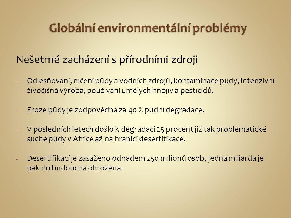 Nešetrné zacházení s přírodními zdroji - Odlesňování, ničení půdy a vodních zdrojů, kontaminace půdy, intenzivní živočišná výroba, používání umělých h