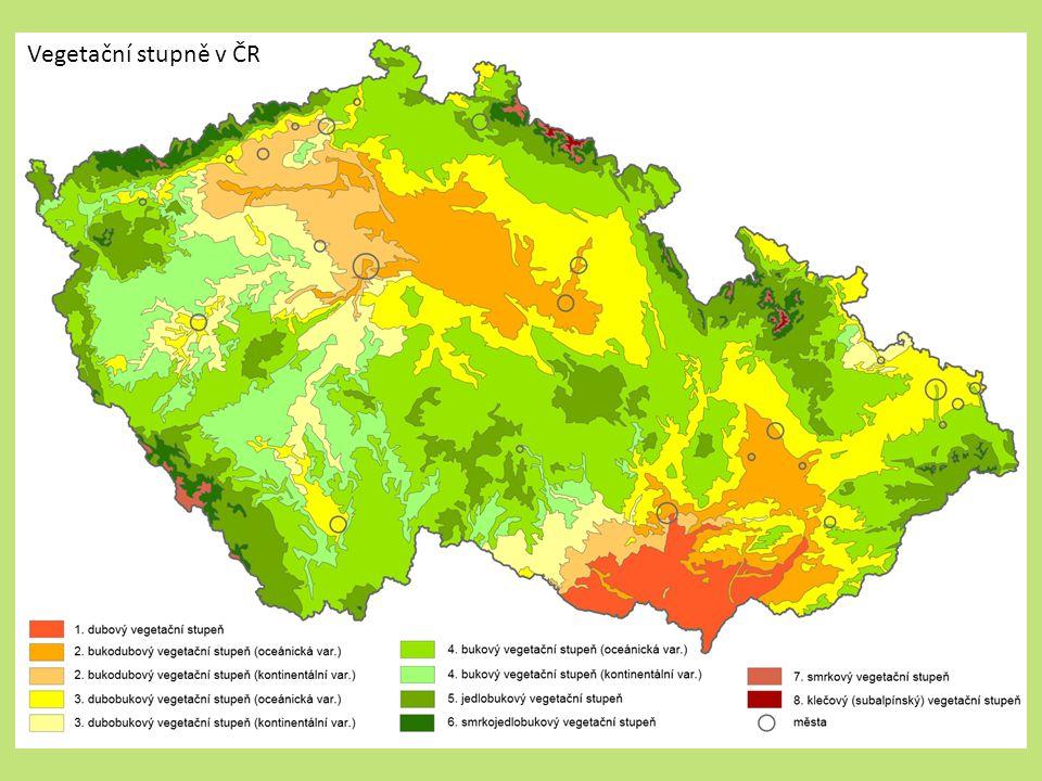 Vegetační stupně v ČR