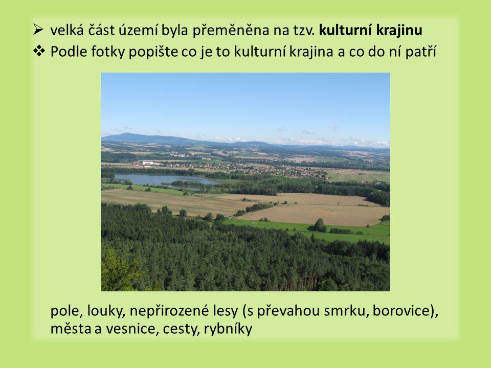  velká část území byla přeměněna na tzv. kulturní krajinu  Podle fotky popište co je to kulturní krajina a co do ní patří pole, louky, nepřirozené l