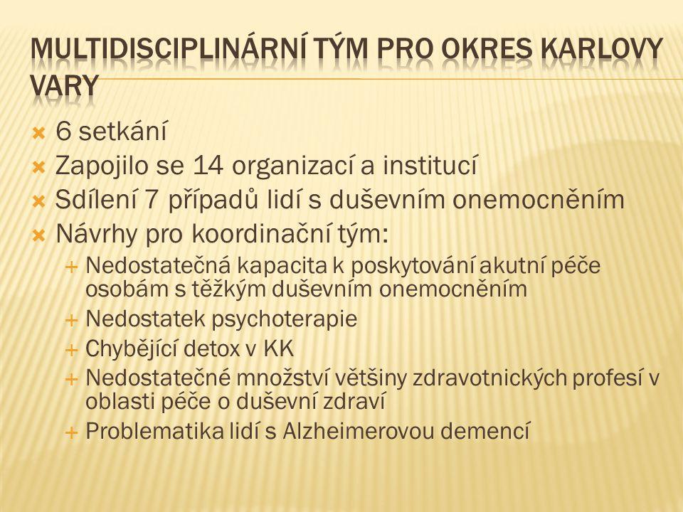  6 setkání  Zapojilo se 14 organizací a institucí  Sdílení 7 případů lidí s duševním onemocněním  Návrhy pro koordinační tým:  Nedostatečná kapac