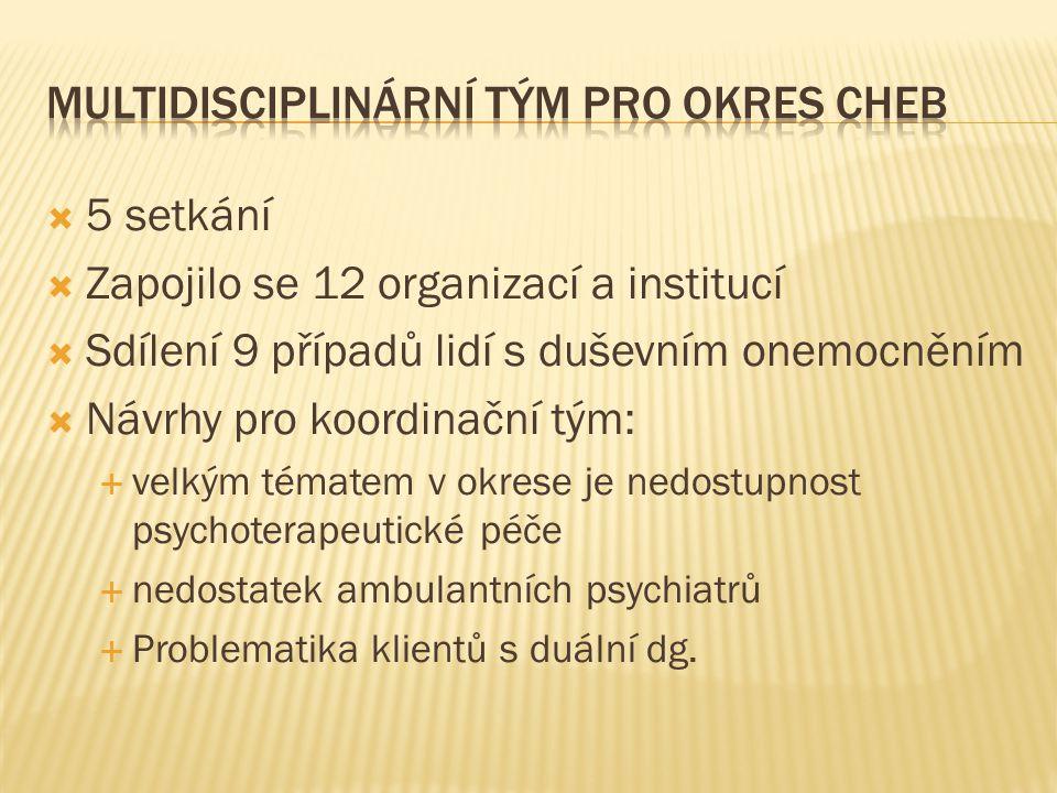  5 setkání  Zapojilo se 12 organizací a institucí  Sdílení 9 případů lidí s duševním onemocněním  Návrhy pro koordinační tým:  velkým tématem v o