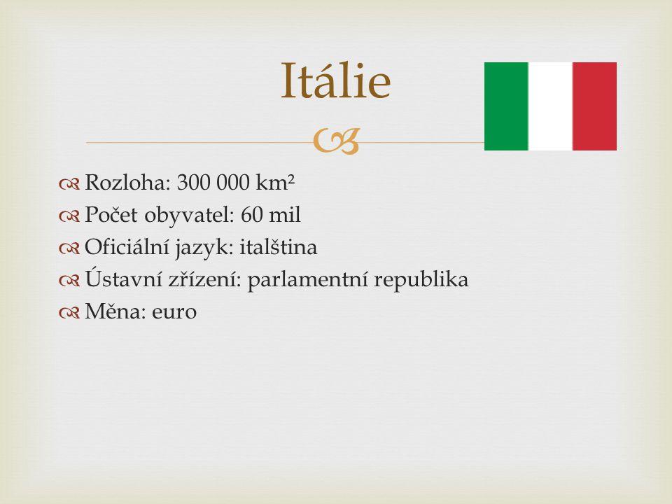   Rozloha: 300 000 km²  Počet obyvatel: 60 mil  Oficiální jazyk: italština  Ústavní zřízení: parlamentní republika  Měna: euro Itálie