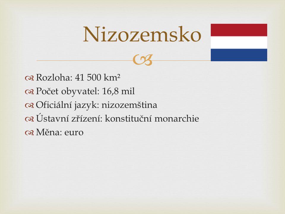   Rozloha: 41 500 km²  Počet obyvatel: 16,8 mil  Oficiální jazyk: nizozemština  Ústavní zřízení: konstituční monarchie  Měna: euro Nizozemsko