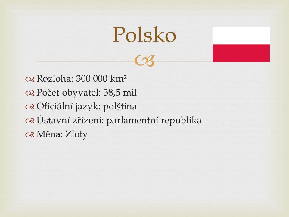   Rozloha: 300 000 km²  Počet obyvatel: 38,5 mil  Oficiální jazyk: polština  Ústavní zřízení: parlamentní republika  Měna: Złoty Polsko