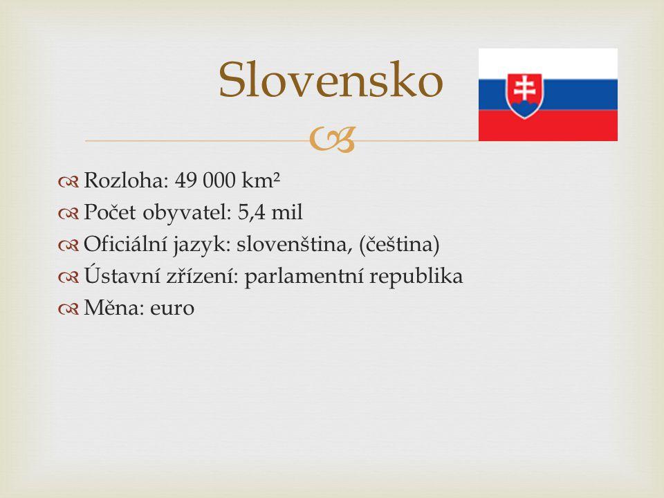   Rozloha: 49 000 km²  Počet obyvatel: 5,4 mil  Oficiální jazyk: slovenština, (čeština)  Ústavní zřízení: parlamentní republika  Měna: euro Slov