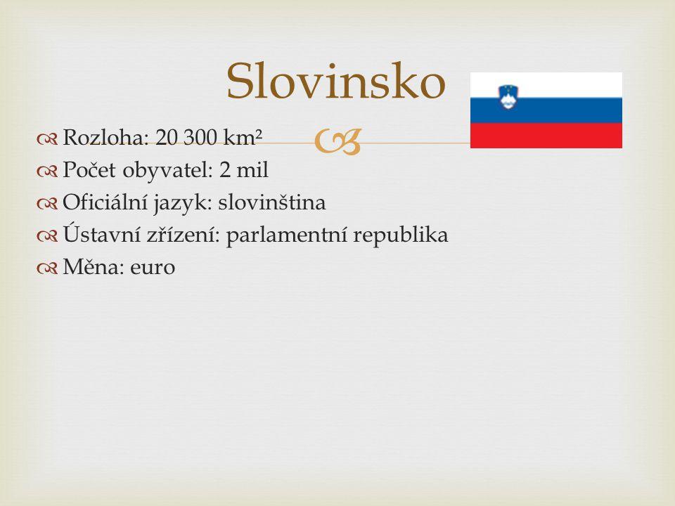   Rozloha: 20 300 km²  Počet obyvatel: 2 mil  Oficiální jazyk: slovinština  Ústavní zřízení: parlamentní republika  Měna: euro Slovinsko
