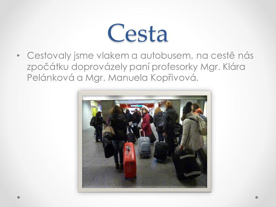 Cesta • Cestovaly jsme vlakem a autobusem, na cestě nás zpočátku doprovázely paní profesorky Mgr. Klára Pelánková a Mgr. Manuela Kopřivová.