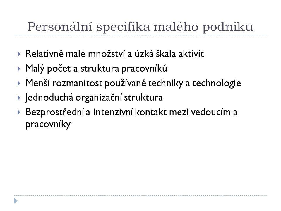 Personální specifika malého podniku  Relativně malé množství a úzká škála aktivit  Malý počet a struktura pracovníků  Menší rozmanitost používané t