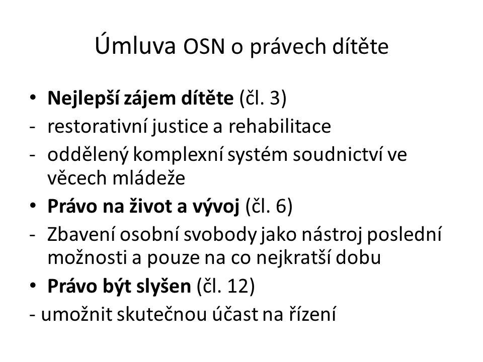 Úmluva OSN o právech dítěte • Nejlepší zájem dítěte (čl.