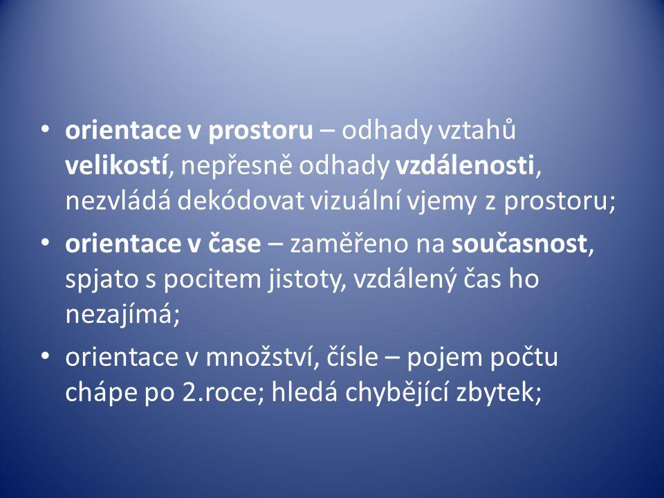 • orientace v prostoru – odhady vztahů velikostí, nepřesně odhady vzdálenosti, nezvládá dekódovat vizuální vjemy z prostoru; • orientace v čase – zamě