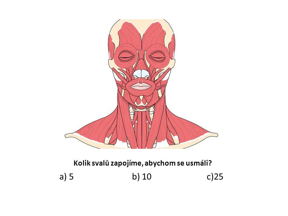 Kolik svalů zapojíme, abychom se usmáli? a) 5 b) 10 c)25
