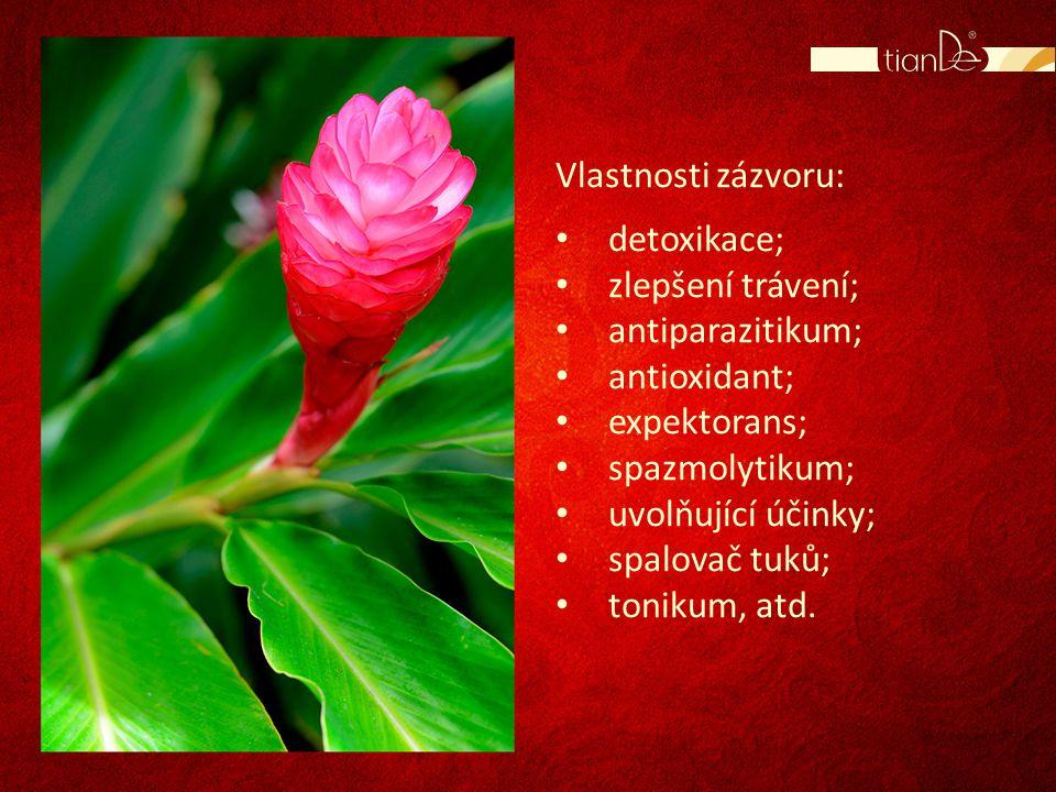 Vlastnosti zázvoru: • detoxikace; • zlepšení trávení; • antiparazitikum; • antioxidant; • expektorans; • spazmolytikum; • uvolňující účinky; • spalova