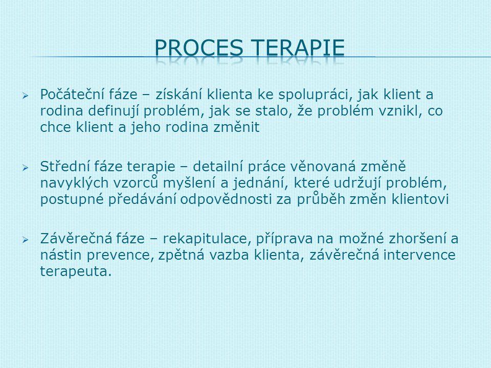 Nástroje  Sebereflexe, reflexe, pružnost v kontextech, připojení se k jazyku Techniky  Zázračná otázka  Cirkulární dotazování  Podporování zdrojů klienta a pozitivních odchylek  Škálování  Přerámování  Domácí úkoly