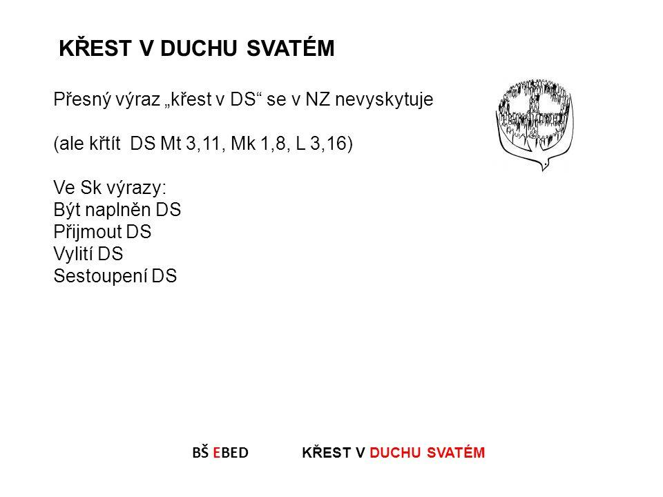 """Přesný výraz """"křest v DS"""" se v NZ nevyskytuje (ale křtít DS Mt 3,11, Mk 1,8, L 3,16) Ve Sk výrazy: Být naplněn DS Přijmout DS Vylití DS Sestoupení DS"""