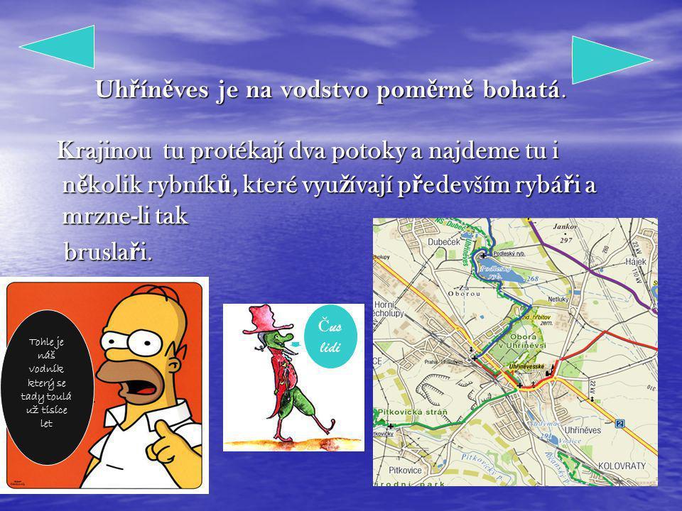 Vodstvo v Uh ř ín ě vsi P.Král & M.Venhoda informace Hra Ahoj jsem Homer a po- dobu tédle hry se mne nezbavite