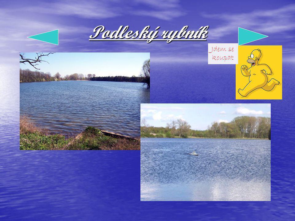 Podleský rybník Jdem se koupat