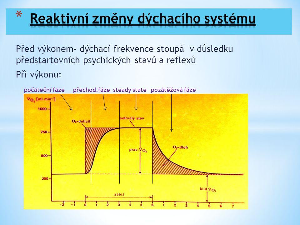 Počáteční fáze: rychlé změny –dechový objem Vt- roste -dechová frekvence DF- roste Organismus pracuje v režimu kyslíkového deficitu Při zátěži střední a vysoké intenzity se 40-60 sec.