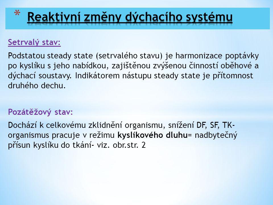 Setrvalý stav: Podstatou steady state (setrvalého stavu) je harmonizace poptávky po kyslíku s jeho nabídkou, zajištěnou zvýšenou činností oběhové a dý