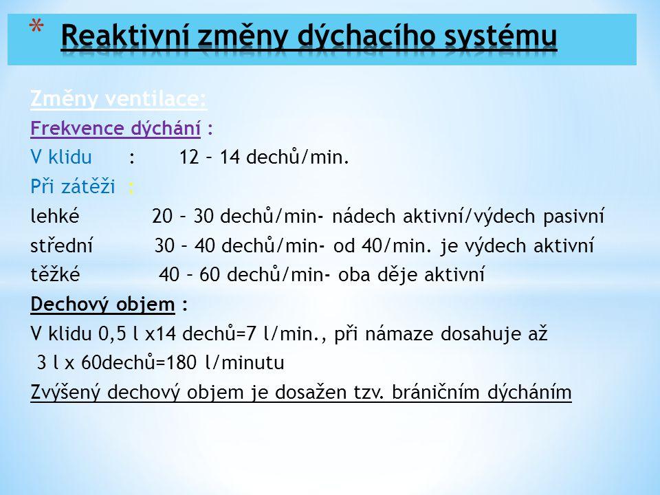 Změny ventilace: Frekvence dýchání : V klidu : 12 – 14 dechů/min. Při zátěži : lehké 20 – 30 dechů/min- nádech aktivní/výdech pasivní střední 30 – 40