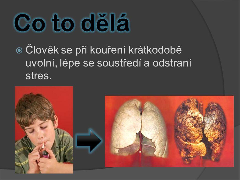  Člověk se při kouření krátkodobě uvolní, lépe se soustředí a odstraní stres.