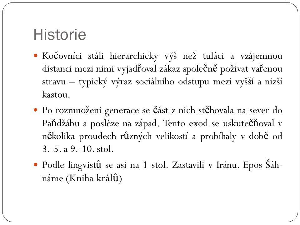 Zdravotní situace  Romské rodi č ky jsou podstatn ě mladší, mají víc d ě tí, víc porodnických komplikací (nedodržování doporu č ení a rad).