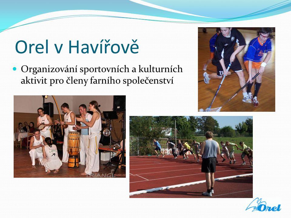Orel v Havířově  Organizování sportovních a kulturních aktivit pro členy farního společenství