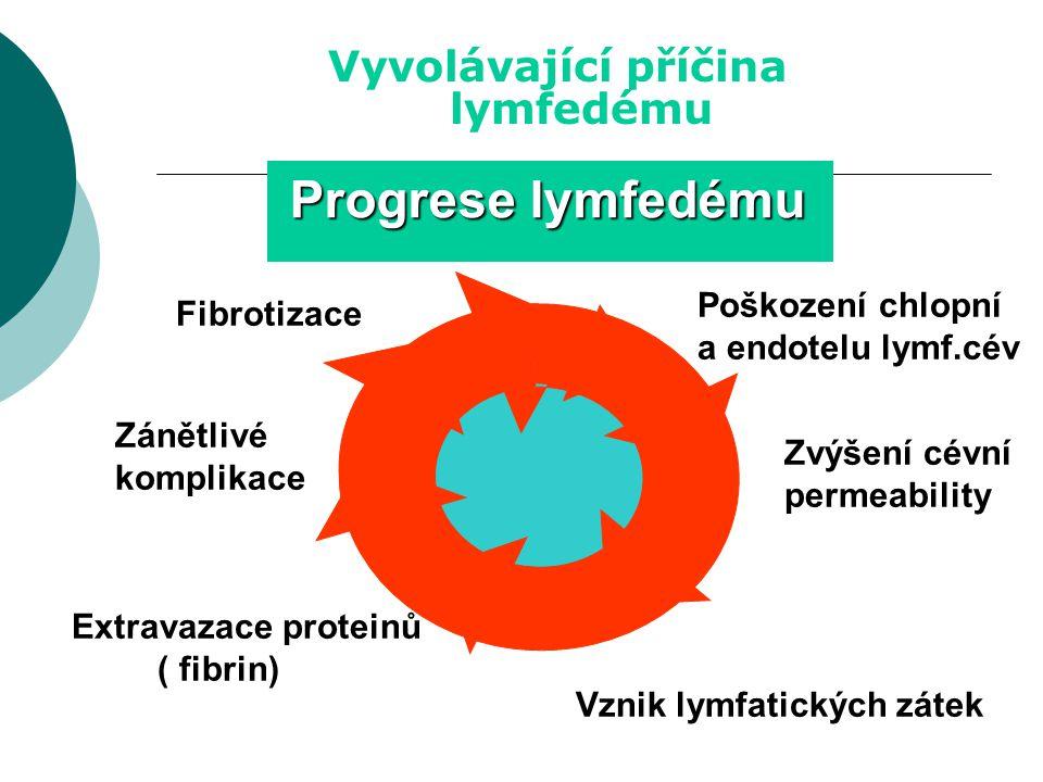 Vyvolávající příčina lymfedému Lymfostáza Poškození chlopní a endotelu lymf.cév Zvýšení cévní permeability Vznik lymfatických zátek Extravazace proteinů ( fibrin) Zánětlivé komplikace Fibrotizace Progrese lymfedému