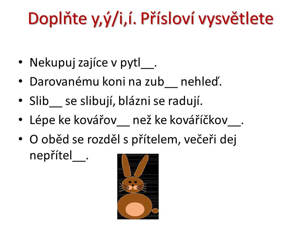 Doplňte y,ý/i,í.Přísloví vysvětlete • Nekupuj zajíce v pytl__.