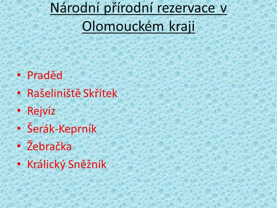 Národní přírodní rezervace v Olomouckém kraji • Praděd • Rašeliniště Skřítek • Rejvíz • Šerák-Keprník • Žebračka • Králický Sněžník