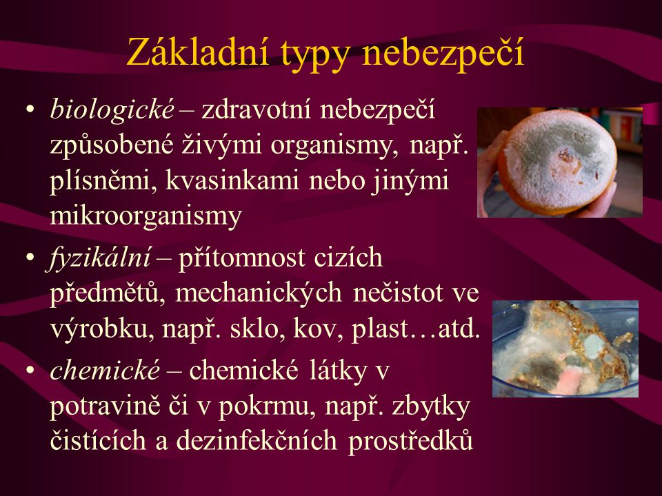 Základní typy nebezpečí •biologické – zdravotní nebezpečí způsobené živými organismy, např. plísněmi, kvasinkami nebo jinými mikroorganismy •fyzikální
