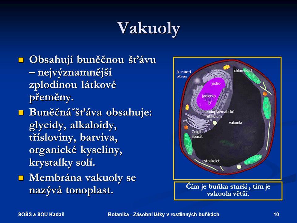SOŠS a SOU Kadaň 10Botanika - Zásobní látky v rostlinných buňkách Vakuoly  Obsahují buněčnou šťávu – nejvýznamnější zplodinou látkové přeměny.