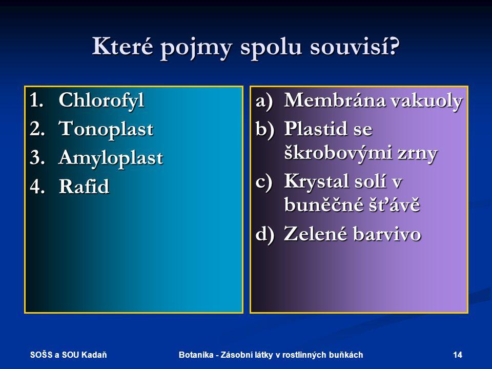SOŠS a SOU Kadaň 14Botanika - Zásobní látky v rostlinných buňkách Které pojmy spolu souvisí.