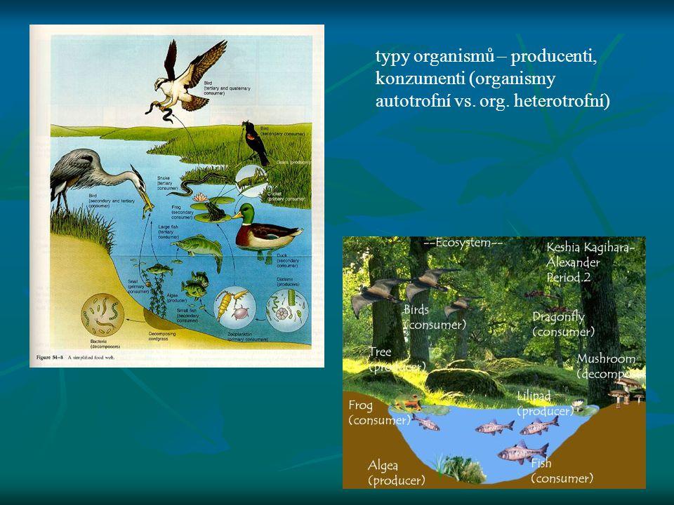 typy organismů – producenti, konzumenti (organismy autotrofní vs. org. heterotrofní)