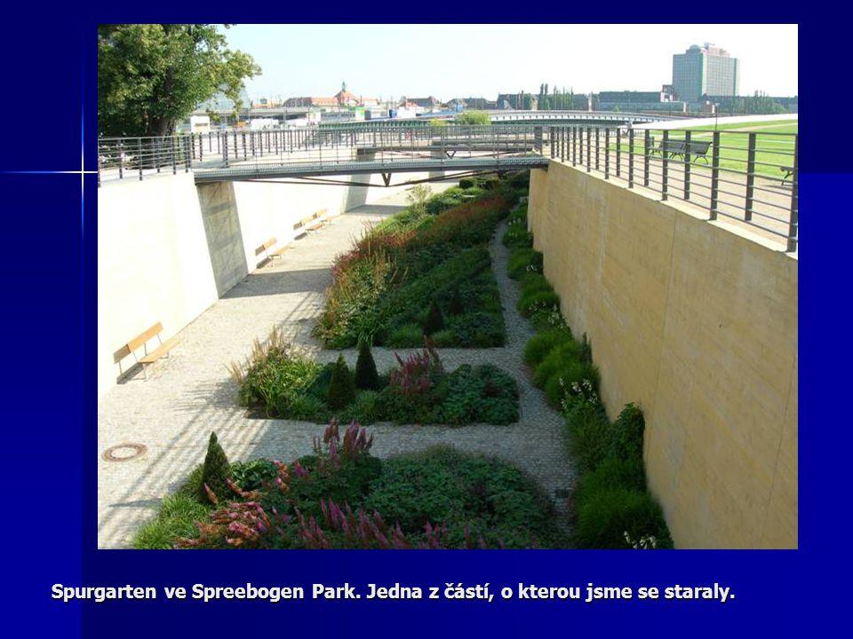 Spurgarten ve Spreebogen Park. Jedna z částí, o kterou jsme se staraly.