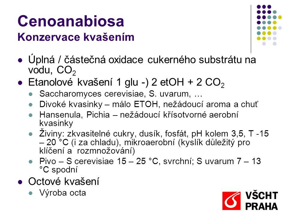 Cenoanabiosa Konzervace kvašením  Úplná / částečná oxidace cukerného substrátu na vodu, CO 2  Etanolové kvašení 1 glu -) 2 etOH + 2 CO 2  Saccharom