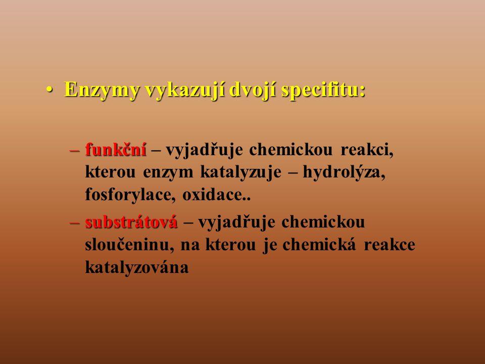 •Enzymy vykazují dvojí specifitu: –funkční –funkční – vyjadřuje chemickou reakci, kterou enzym katalyzuje – hydrolýza, fosforylace, oxidace..