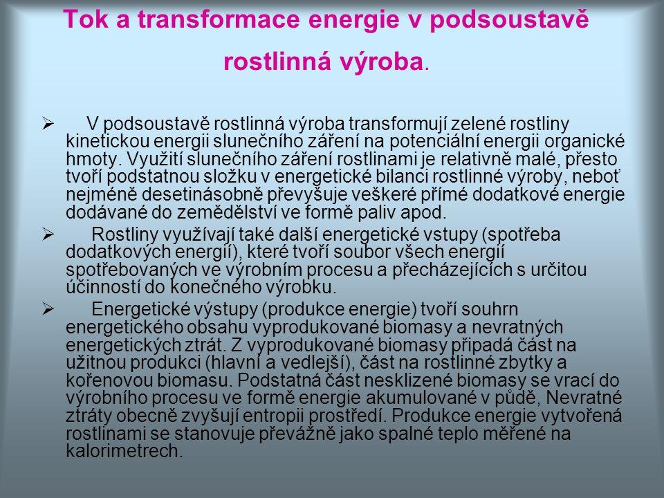 Tok a transformace energie v podsoustavě rostlinná výroba.  V podsoustavě rostlinná výroba transformují zelené rostliny kinetickou energii slunečního