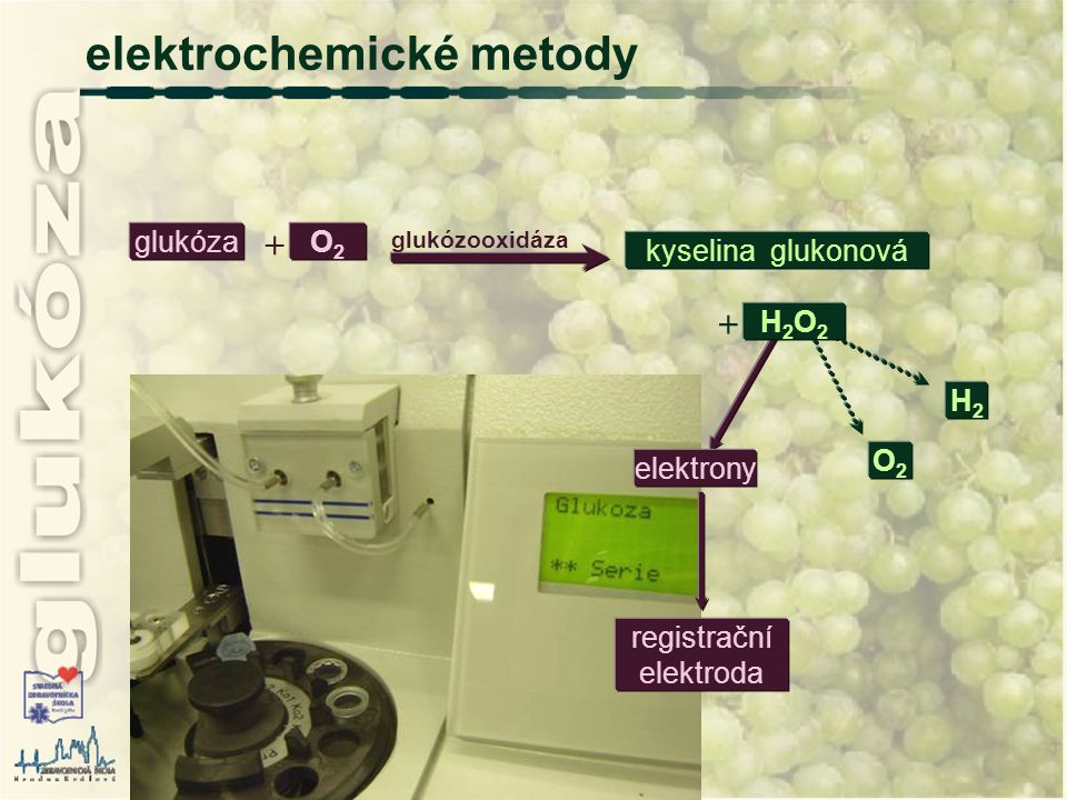 elektrony H2H2 O2O2 glukóza  O2O2 glukózooxidáza kyselina glukonová elektrochemické metody  H2O2H2O2 registrační elektroda