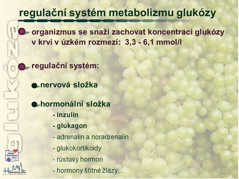 regulační systém: nervová složka hormonální složka - inzulin - glukagon - adrenalin a noradrenalin - glukokortikoidy - růstový hormon - hormony štítné