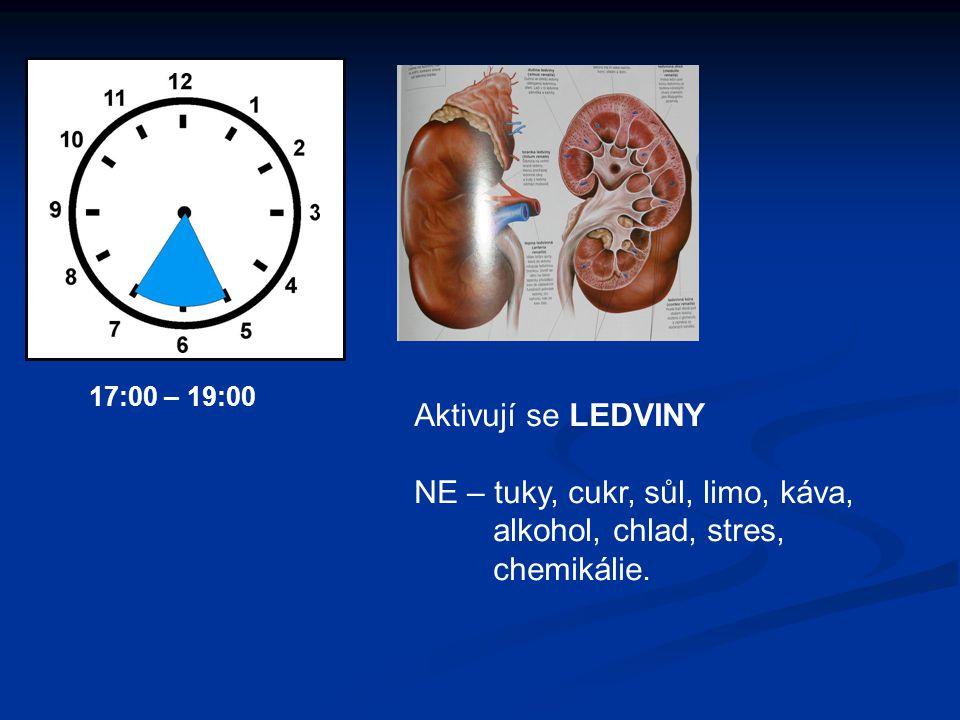 Aktivují se LEDVINY NE – tuky, cukr, sůl, limo, káva, alkohol, chlad, stres, chemikálie. 17:00 – 19:00