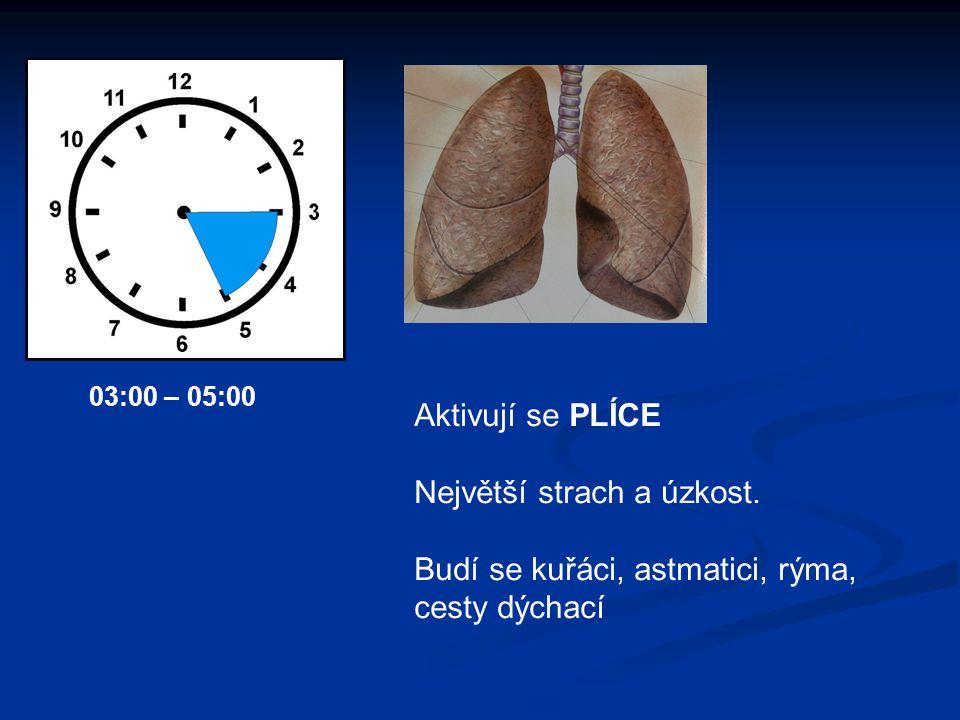 Aktivují se PLÍCE Největší strach a úzkost. Budí se kuřáci, astmatici, rýma, cesty dýchací 03:00 – 05:00