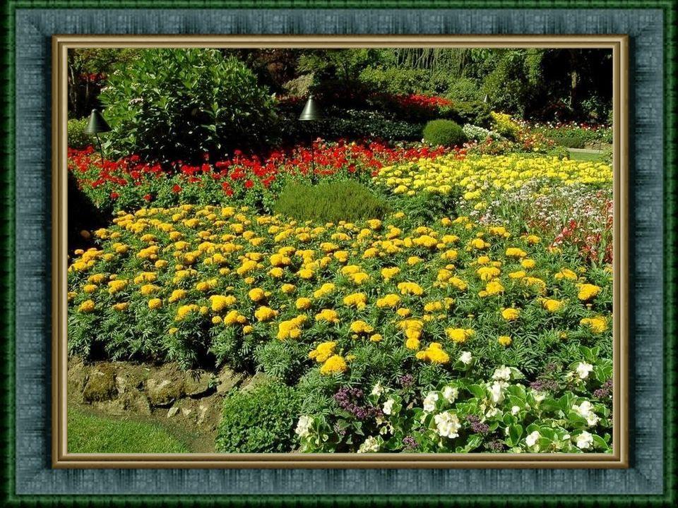 V každém ročním období je na zahradách co vidět, co obdivovat. Zahrady mohou sloužit i zahrádkářům k inspiraci pro jejich další činnost. Například - B