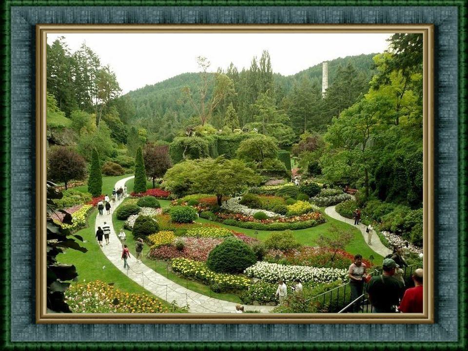 Nemusíte být zahradník, abyste chtěli navštívit Butchartovy zahrady ve státě Victoria BC (Kanada). Tyto zahrady jsou opravdu umělecké dílo, a neměli b
