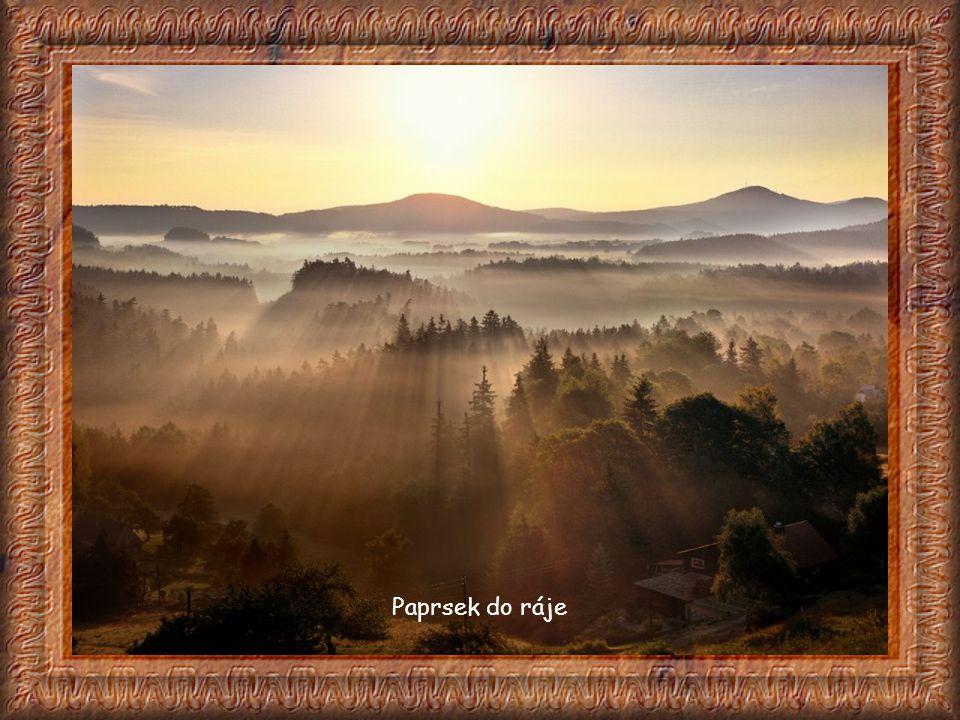 Polenztal Polenztal je také na německé straně - údolí s plochým dnem. Jeho kaňon vytvořený říčkou Polenz je natolik charakteristický, že se údajně své